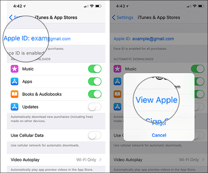 Tap on View Apple ID in iPhone or iPad Settings