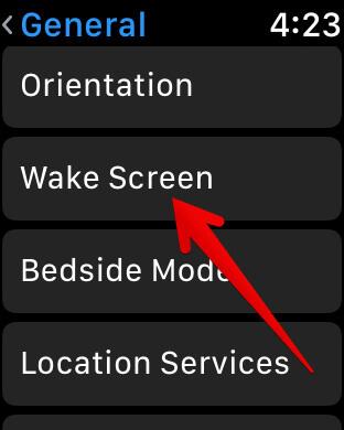 Tap on Wake Screen in Apple Watch Settings