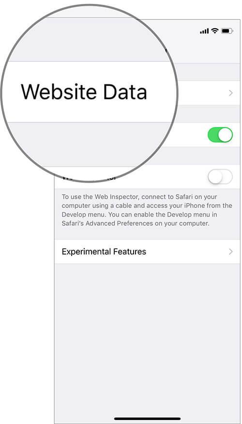 Tap on Website Data in Safari Settings on iPhone or iPad