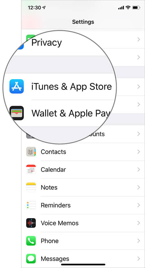 Tap on the iTunes & App Store in iPhone Settings