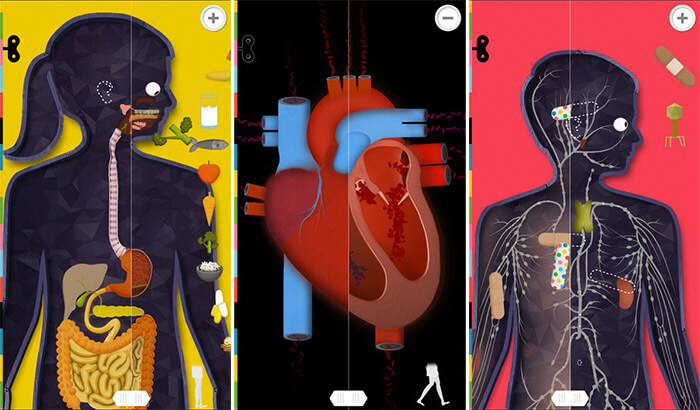 The Human body iPhone and iPad App Screenshot