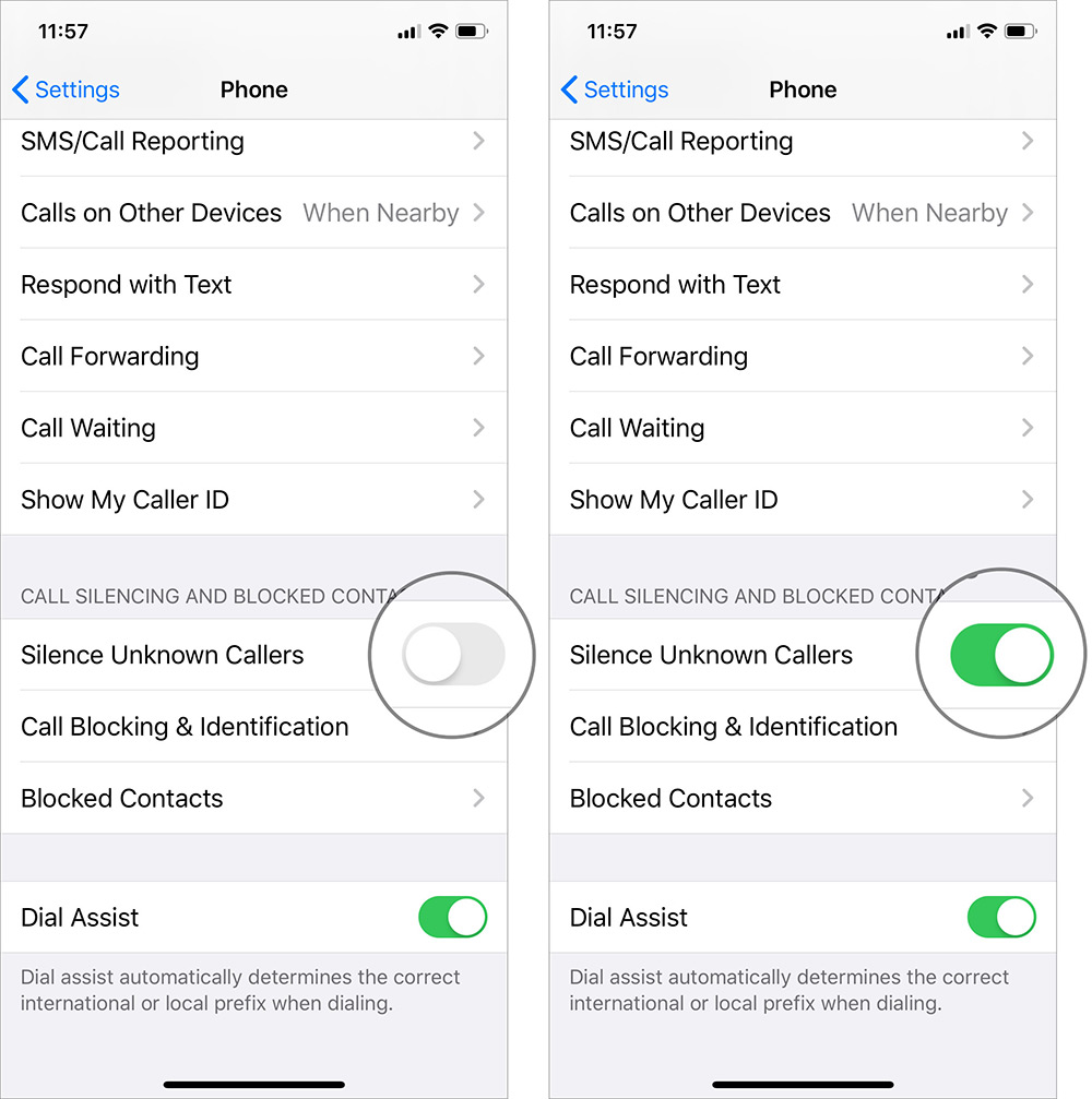 Toggle ON Silence Unknown Callers to Automatically Silence Spam Calls on iPhone