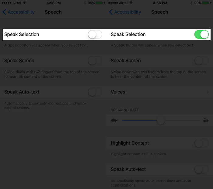 Toggle On Speak Selection in iPhone Accessibility Settings