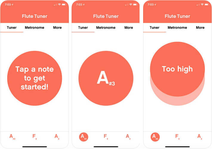 Tune This iPhone and iPad Flute Learning App Screenshot