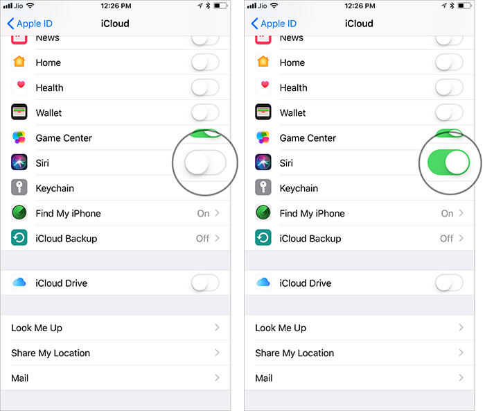 Turn on the switch next to Siri in iPhone iCloud Settings