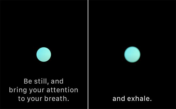 Use Breath App on Apple Watch