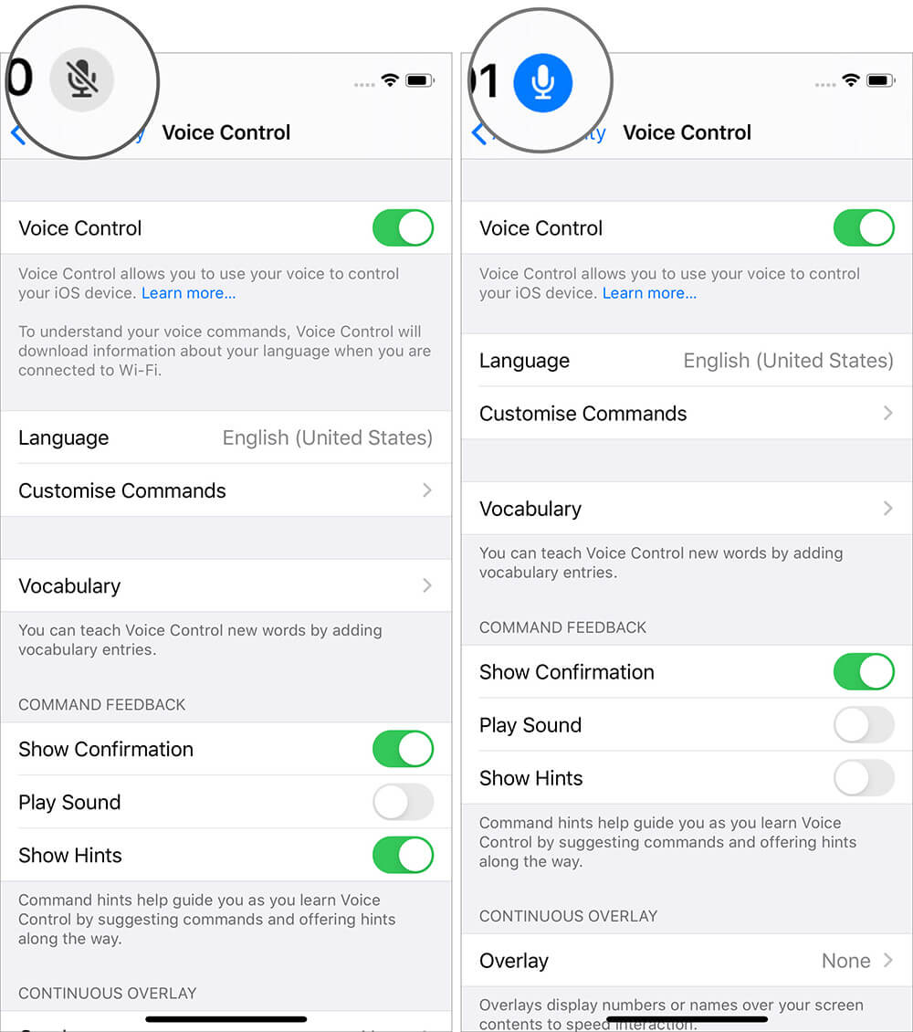 Use Voice Control in iOS 13 on iPhone without Internet Connection