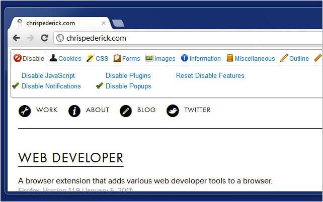 Web Developer Google Chrome extension
