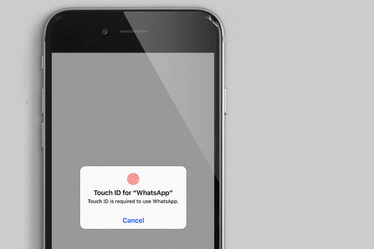 WhatsApp App Support Touch ID and Face ID