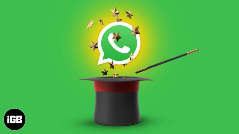 WhatsApp Tips and Tricks for iPhone