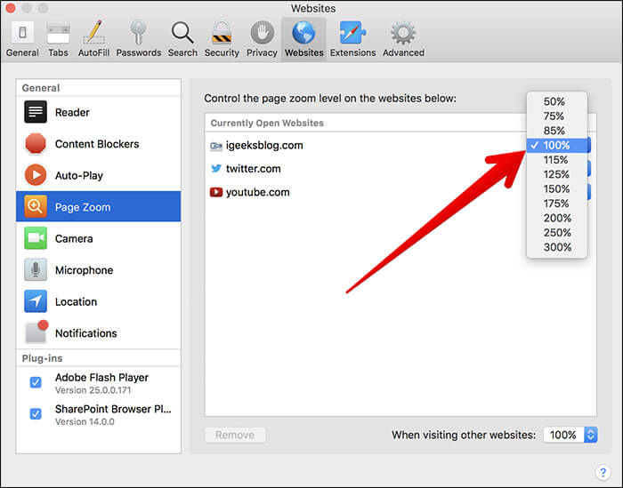 Zoom Currently Open Website in Safari on Mac