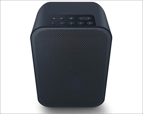 bluesound pulse flex 2i airplay 2 supported speaker