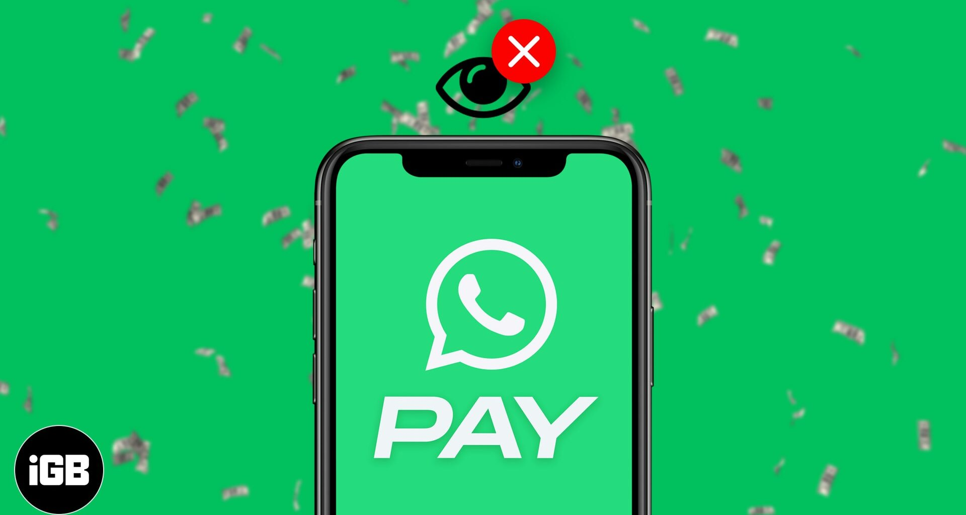 WhatsApp Payment Option Not Showing