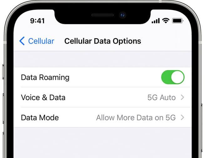 Check Data Roaming on iPhone 12 Series