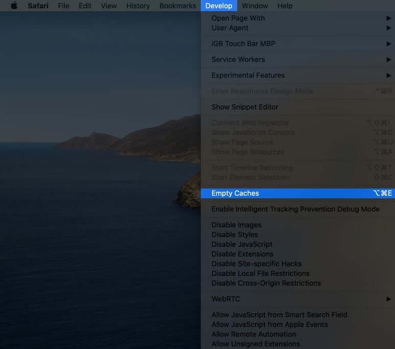 click on develop and select empty cache to clear safari cache on mac