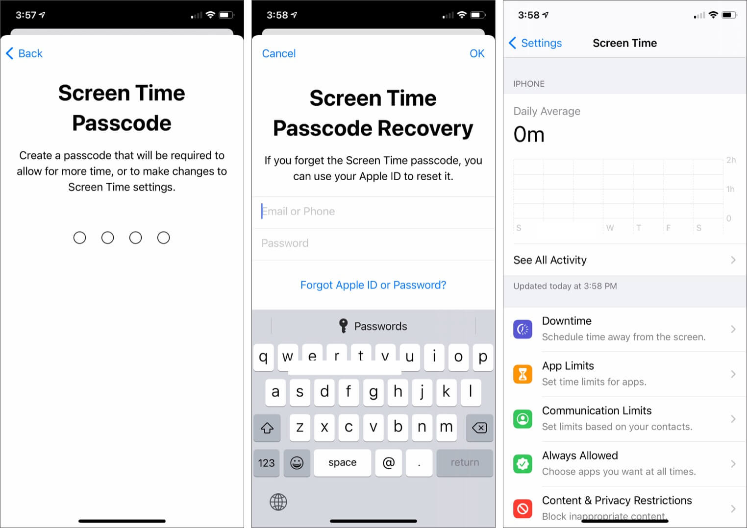 Fill Screen Time Passcode and Apple ID for Recovery