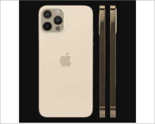 GadgetShieldz iPhone 12 Pro Max Skin