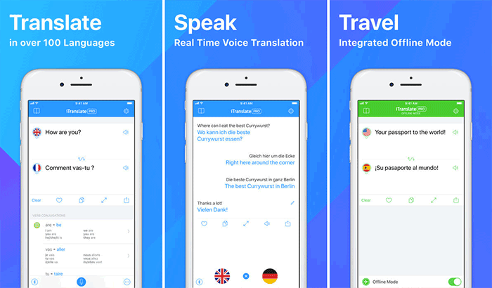 iTranslate Translation iPhone App Screenshot