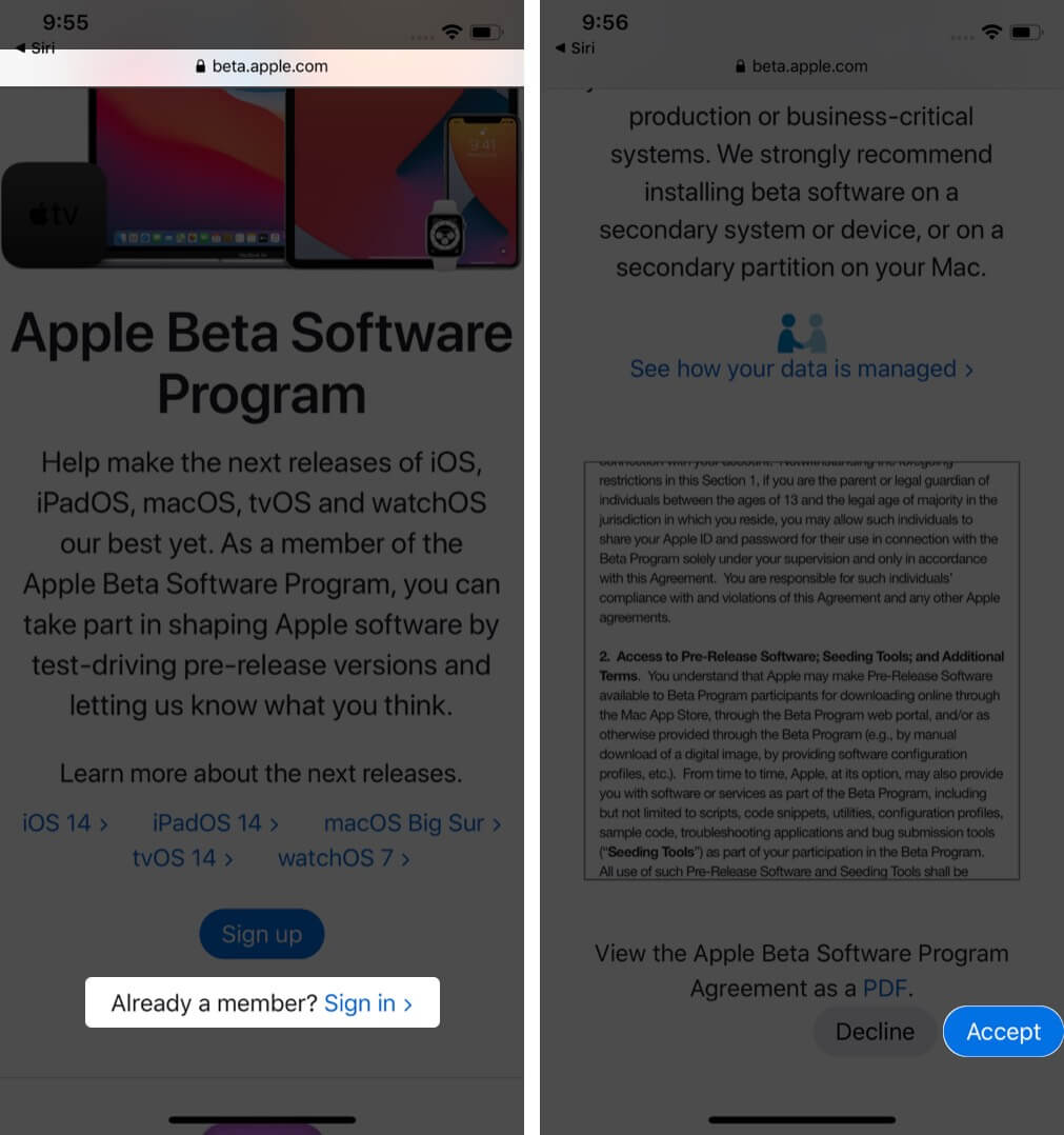 login to apple account in beta.apple.com and tap on accept in safari on iphone