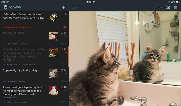narwhal for reddit iPad App Screenshot