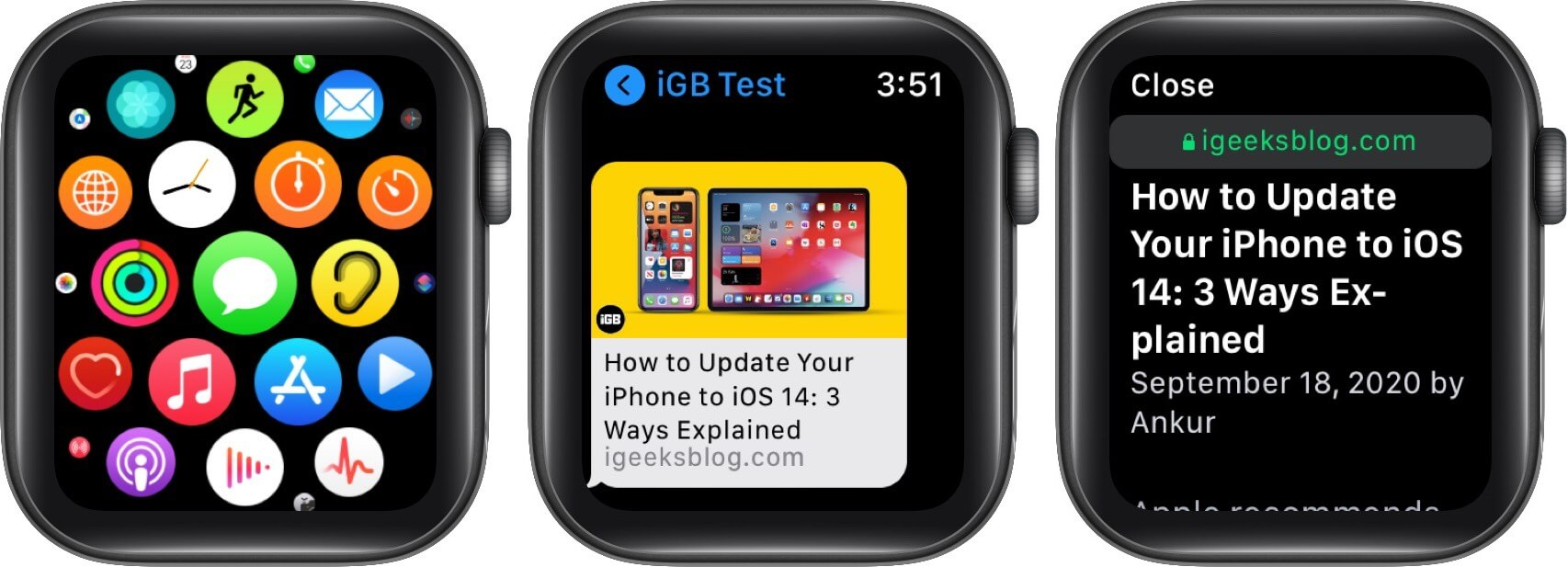 open messages app and tap on link to search the web on apple watch