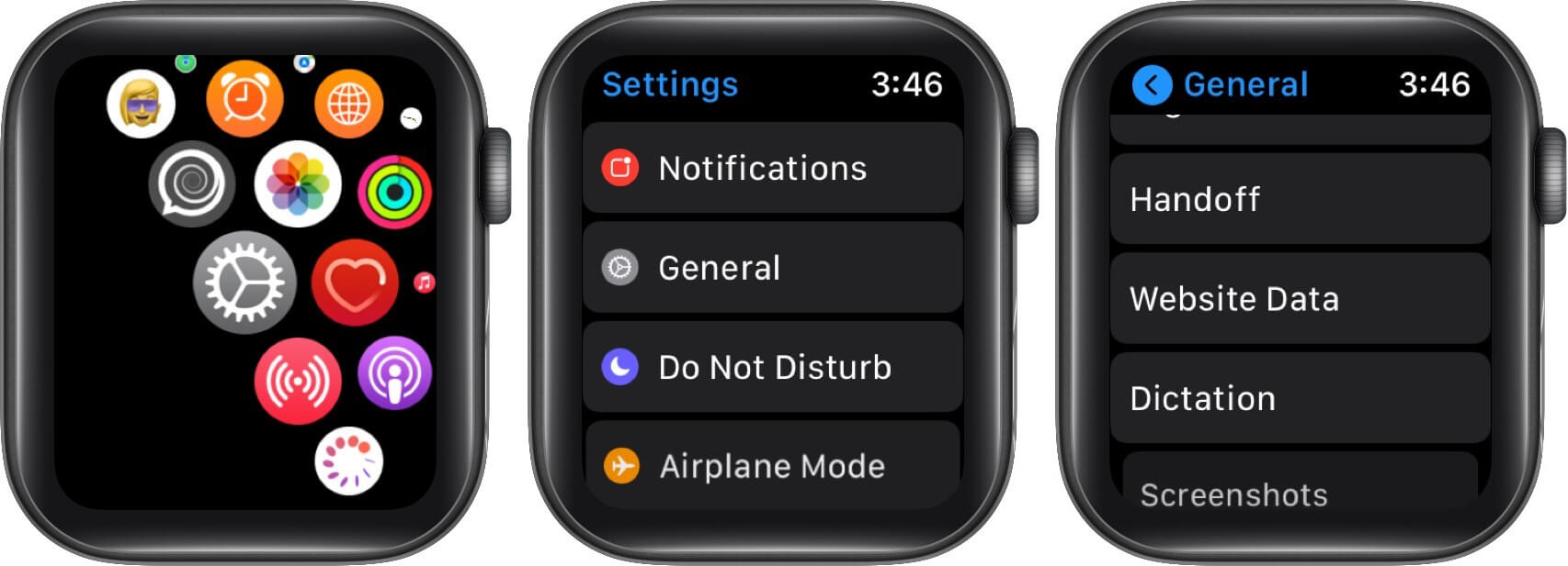 open settings tap on general and then tap on website data on apple watch