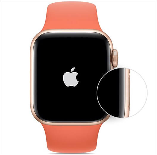 press and hold side button to switch on apple watch