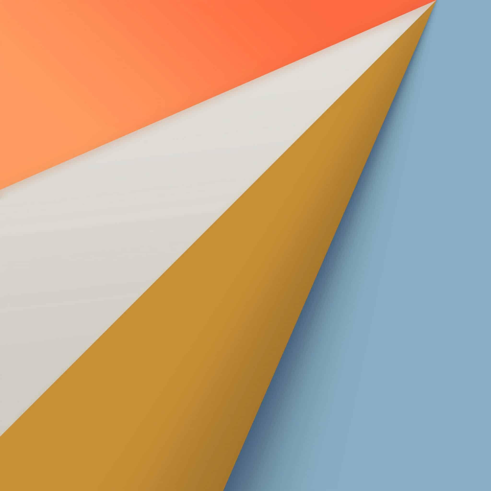 safari background orange wallpaper