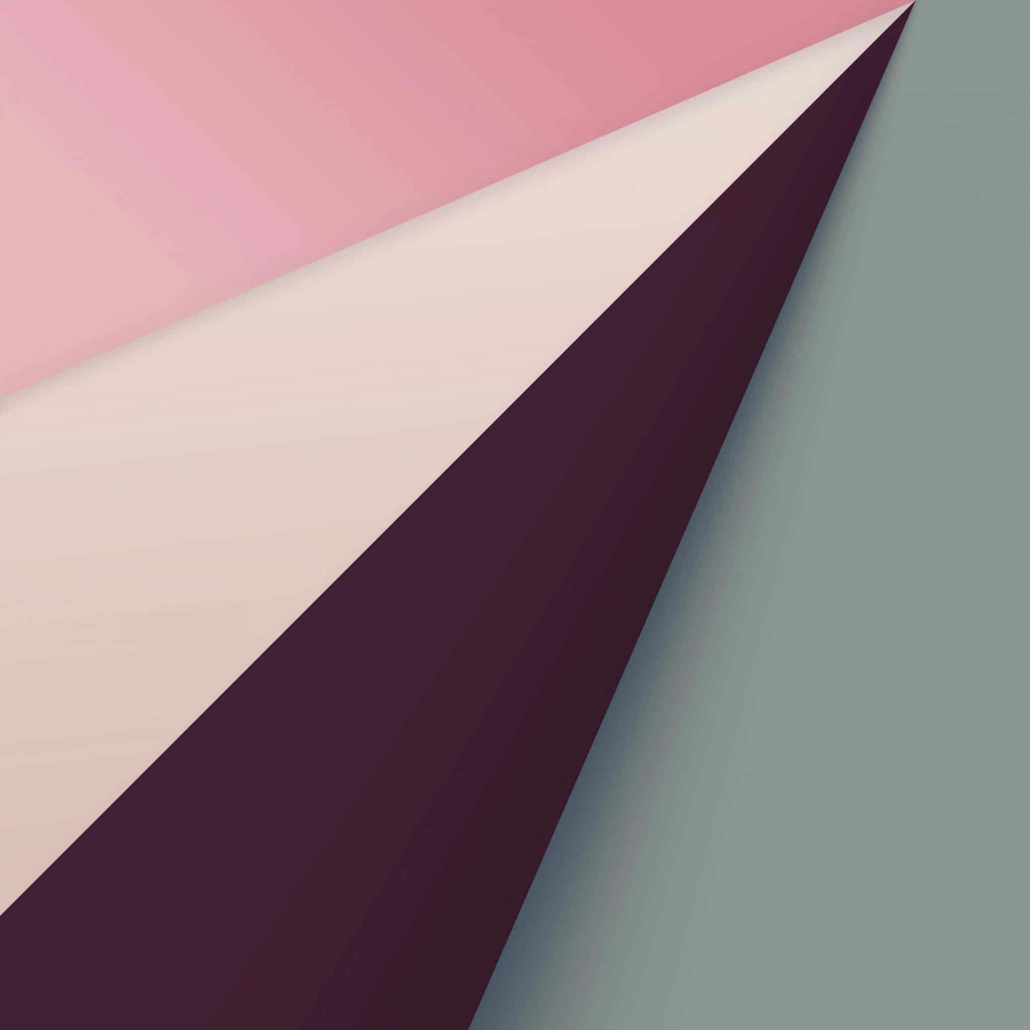 safari background pink wallpaper