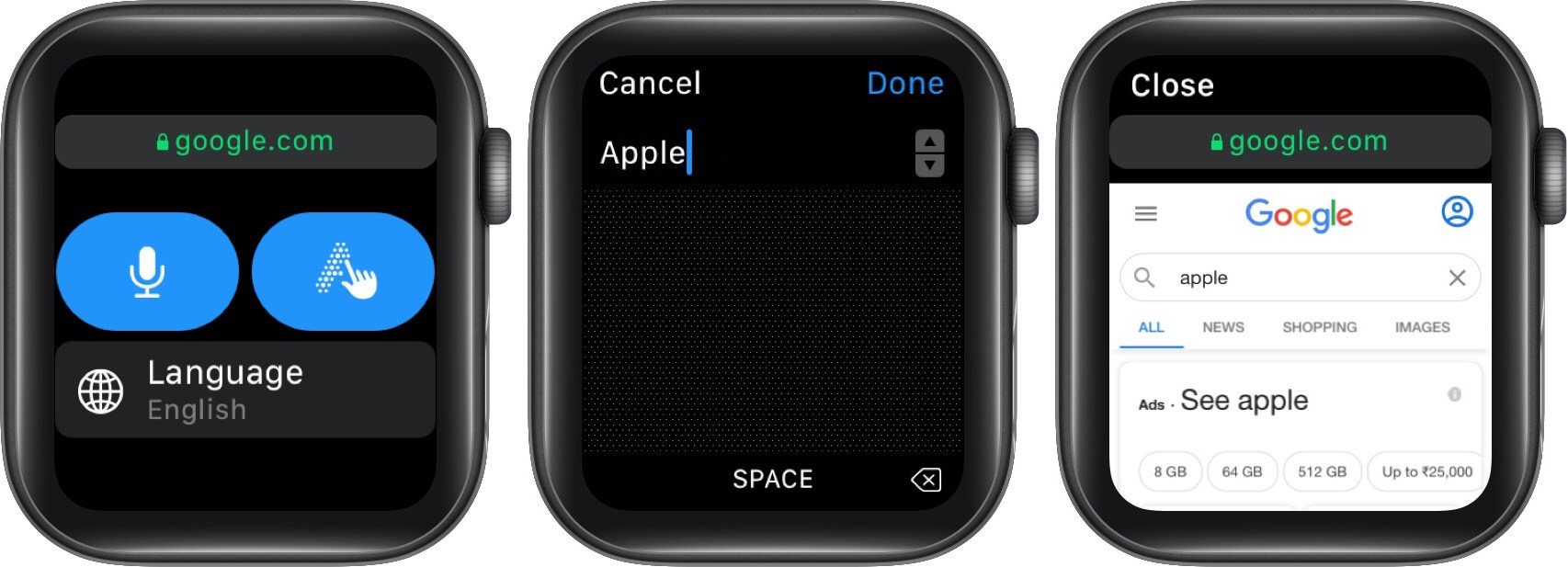 search the web on apple watch