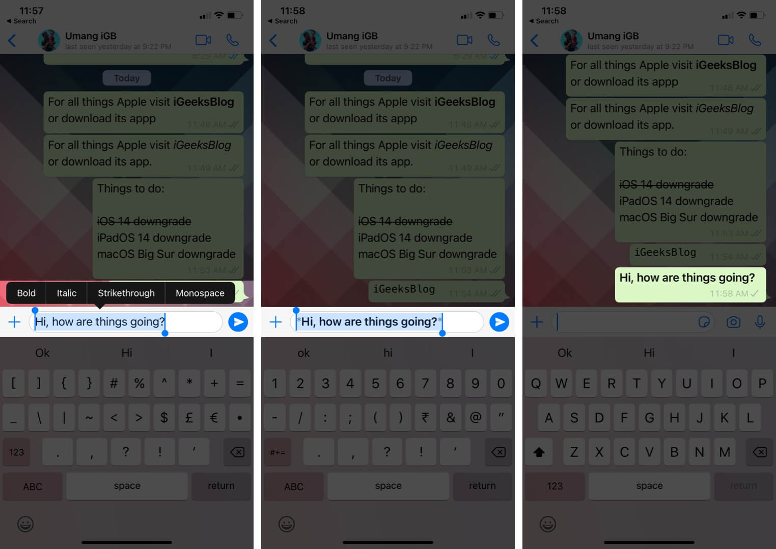 select text and tap on option to format text in whatsapp message on iphone