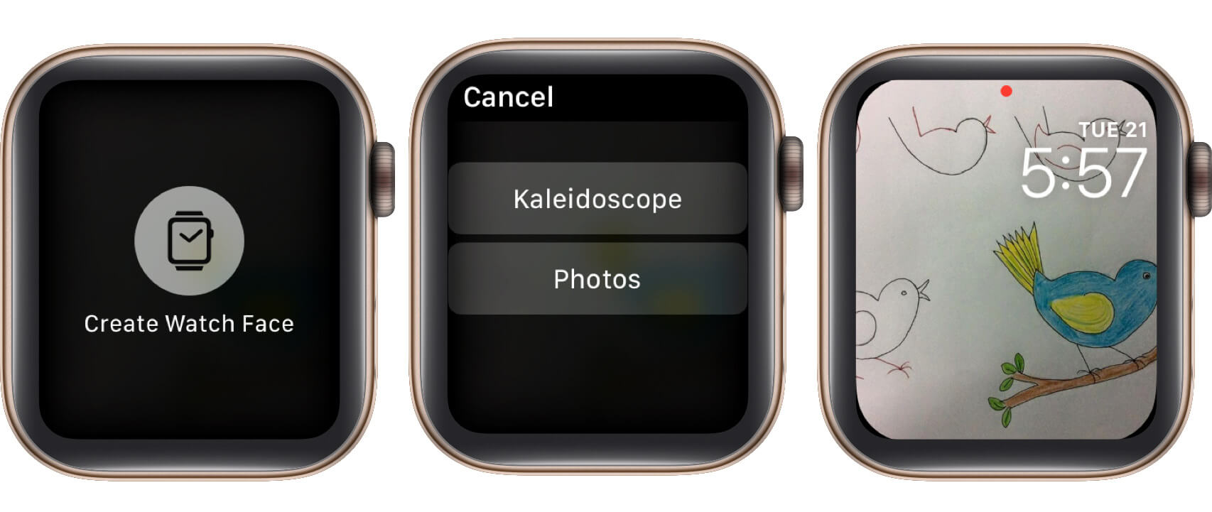 set a photo as watch face on apple watch