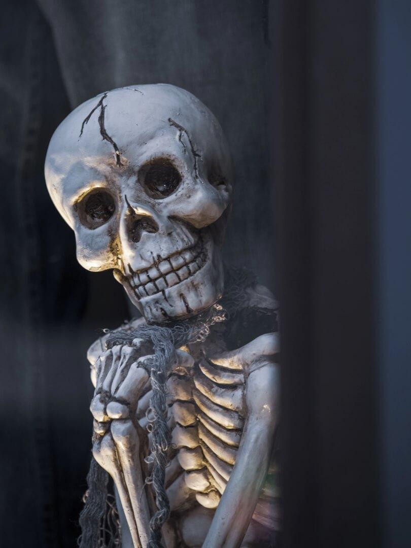 Skull Aesthetic Halloween Wallpaper for iPhone
