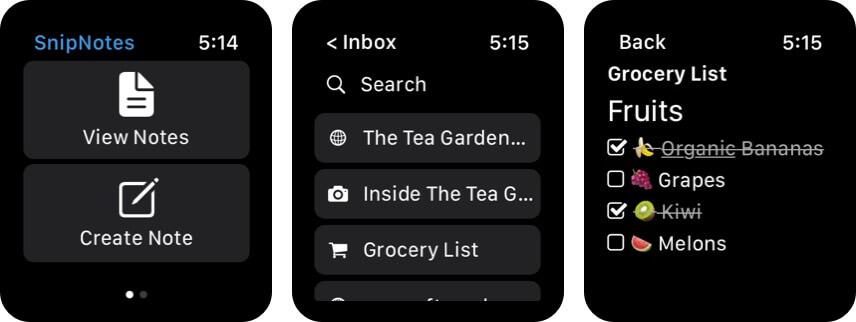 SnipNotes Apple Watch App Screenshot