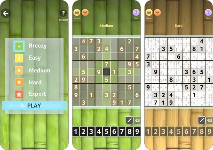 Sudoku by Brainium Studios LLC iPhone and iPad Game Screenshot