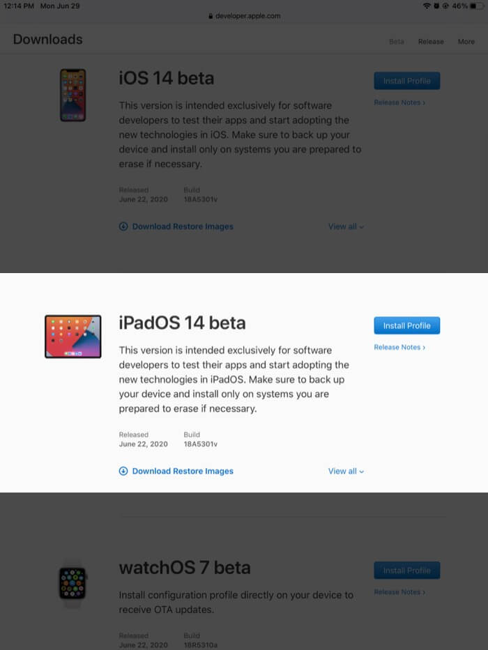 tap on install profile next to ipados 14 beta in developer account on ipad