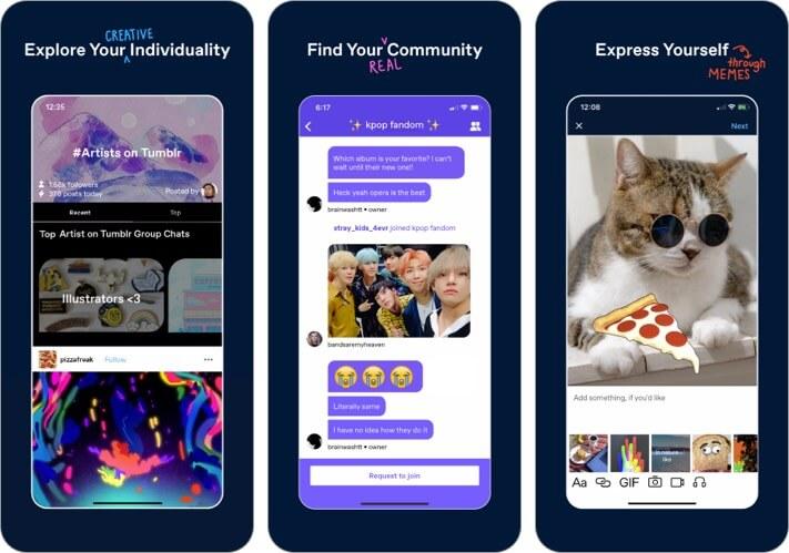 Tumblr iPhone and iPad GIF Maker App Screenshot