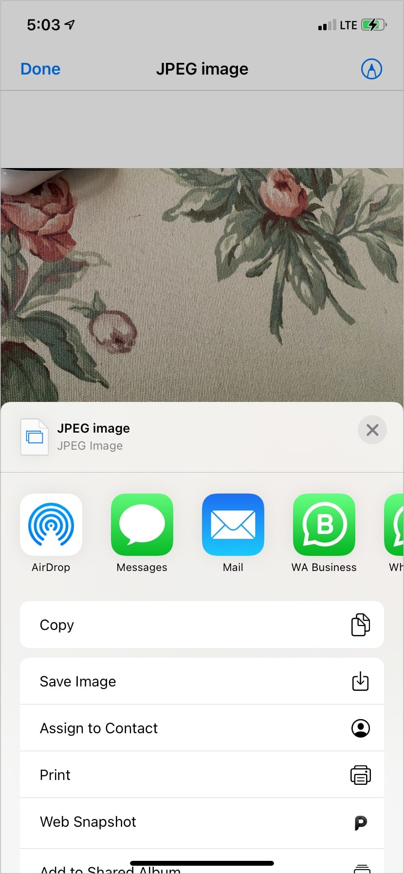 Save JPEG from Files app to Photos App