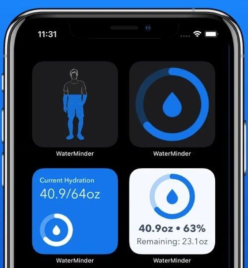 WaterMinder third party iOS 14 widget