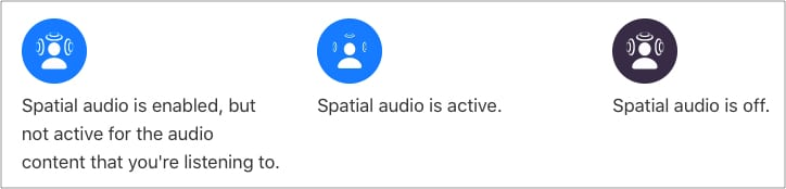 AirPods Pro Spatial Audio symbol meaning