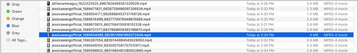 Creator's TikTok ID in the title in Qoob Clips for Mac