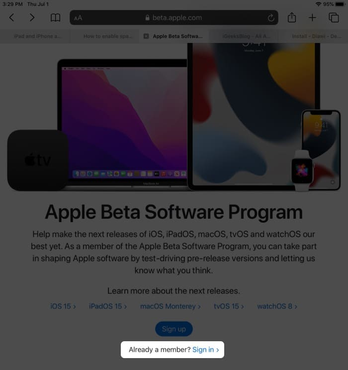 Open Safari on your iPad and visit beta.apple.com