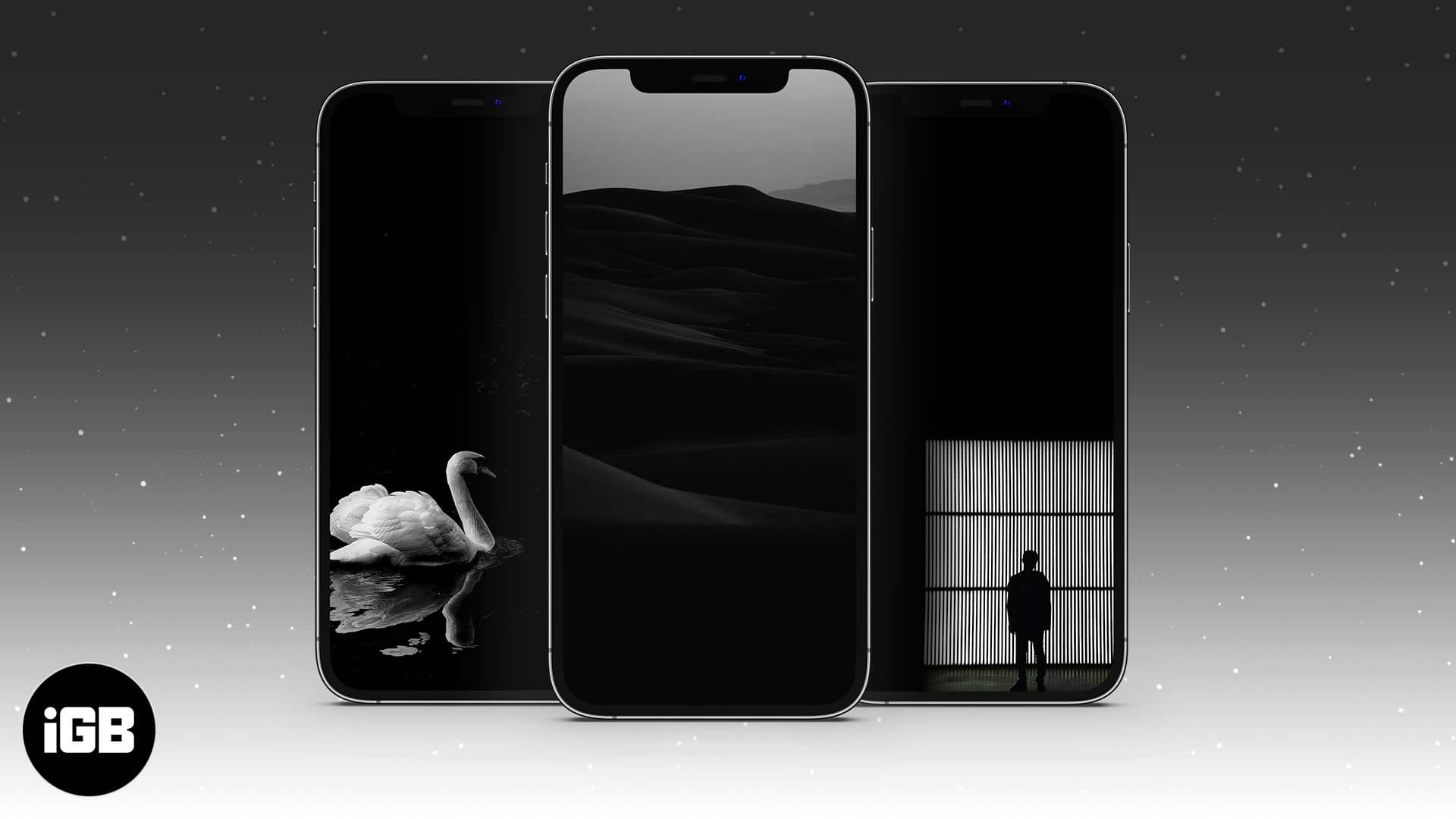 21 Beautiful black wallpapers for iPhone Free download   iGeeksBlog