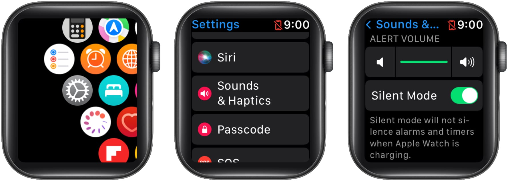 Toggle ON Silent Mode on Apple Watch