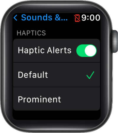 Turn ON Haptic Alerts on Apple Watch