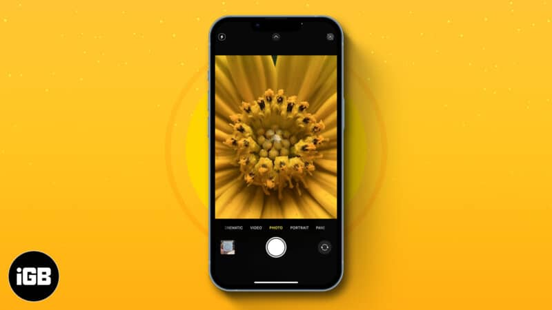 How to take macro photos and videos on iPhone 13 Pro models